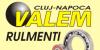 VALEM-RULMENȚI - Curele trapezoidale, organe de asamblare, echipamente industriale