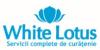 WHITE LOTUS - servicii curatenie in Cluj Napoca