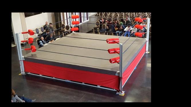 Confecție metalică pentru ring de wrestling realizată de East Man