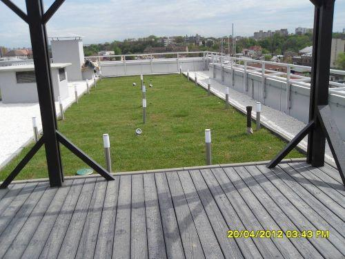 Acoperis terasa cu vegetatie intensiva